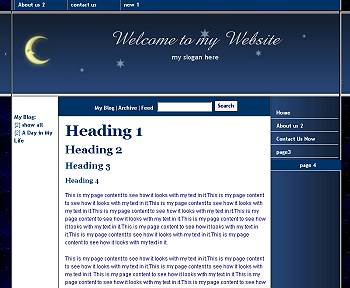Under the Stars - Flash Design Template Click here to view this design - No html skills required